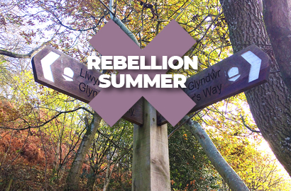 Summer Rebellion Trail Running Event